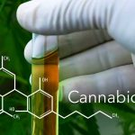 Le Cannabidiol (CBD), usage thérapeutique du cannabis